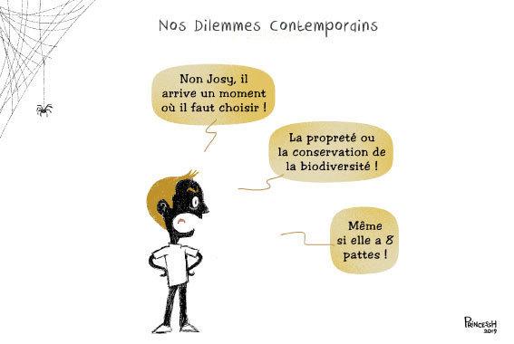 Non, Josy, il arrive un moment où il faut choisir ! La propreté ou la conservation de la biodiversité ! Même si elle a 8 pattes !