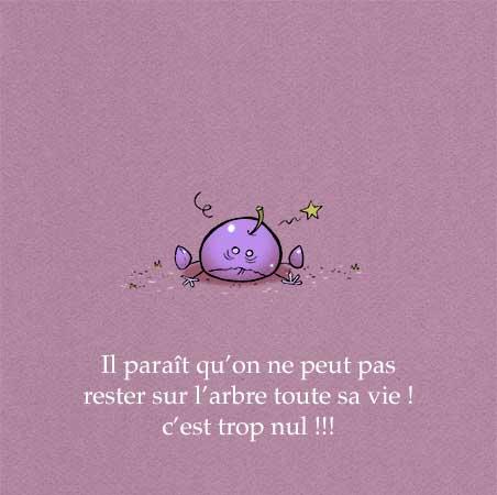 """Extrait de """"Prune & Prétention"""" Auteur, auteure, autrice : PrincessH Editions Lapin"""